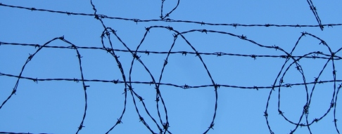 barbwire © Gautier Willaume  Dreamstime Stock Photos